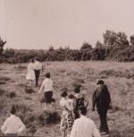 Photo du mariage de mes parents le 1er juillet 1961